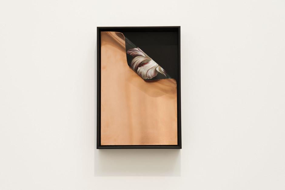 Untitled - Quinten Ingelaere