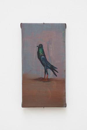 Isa De Leener: Untitled (Slender pigeon)